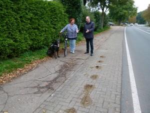 L_154_Radweg_Seebergen